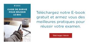 Telechargez ebook guide survie bac