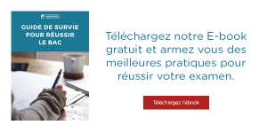 Telechargez ebook guide survie bac
